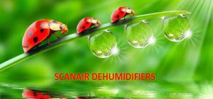 Scanair Dehumidifiers